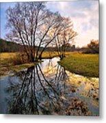 Ossow - Dluga River Metal Print