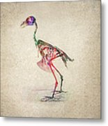Osteology Of Birds Metal Print by Aged Pixel