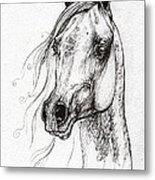 Ostragon Polish Arabian Horse 3 Metal Print