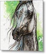 Ostragon Polish Arabian Horse Painting   Metal Print