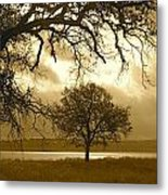Other Worldly Metal Print