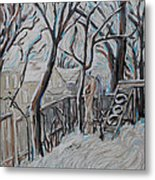 Ottawa Backyard Metal Print