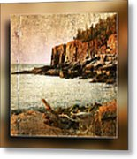 Otter Cliffs Acadia National Park Metal Print