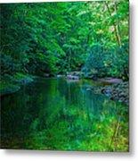 Otter Creek Reflection  Metal Print