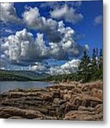 Otter Point Afternoon Metal Print
