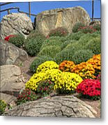 Ott's Greenhouse - Chrysanthemum Hill - Schwenksville - Pa Metal Print