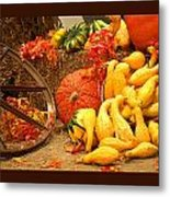 Our Harvest Today Metal Print