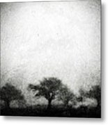 Our Moment In Patience Metal Print