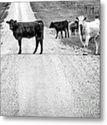 Our Way Or The Highway Bw Metal Print