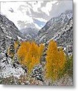 Ouray Fall Colors Metal Print