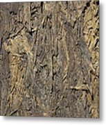 Out Door Ply Wood Tatter Floor  Metal Print
