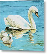 Out For A Morning Swim Metal Print