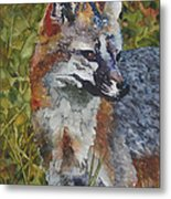 Out Foxed Metal Print