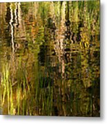 Out In The Reeds Metal Print