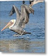 Out Of The Blue 5 Metal Print