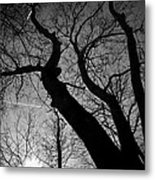 Out Of The Darkness Comes Light Metal Print