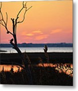 Ocean City Sunset Out On A Limb Metal Print