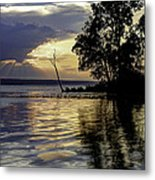 Out On Point Metal Print