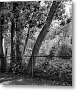 Out The Back Door Metal Print