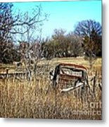 Out To Pasture 3 Metal Print
