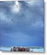 Outer Banks - Driftwood Bush On Beach In Surf I Metal Print