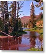 Outstanding Yellowstone National Park Metal Print by John Malone