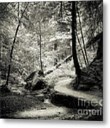 Over The River And Through The Woods Metal Print