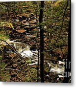 Over The River And Thru The Wood Metal Print