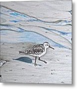Overcast Day With Sanderlings Metal Print