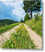 Overgrown Rural Path Up A Hill Metal Print