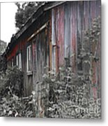 Overgrown Shed B/w Metal Print