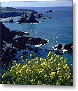 Overlook Point Metal Print by Cole Black