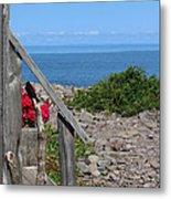 Overlooking Bay Of Fundy Metal Print