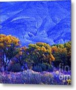 Owens Valley Fall Colors  Metal Print