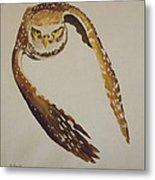 Owl Attack Metal Print