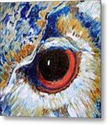 Owl Gaze Metal Print