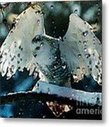 Owl In Snow Metal Print