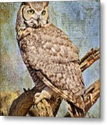 Owl On A Tree Metal Print