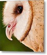 Owl Profile Metal Print