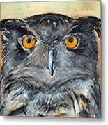 Owl Series - Owl 1 Metal Print