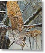 Owl Taking Off Metal Print