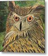 Owl With Orange Eyes Metal Print
