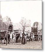 Ox-driven Wagon Freight Train C. 1887 Metal Print