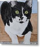 Pablo The Cat Metal Print