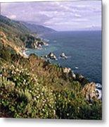 Pacific Coastline At Big Sur Metal Print by George Oze