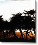 Pacific Grove Golf Links 19902 Metal Print