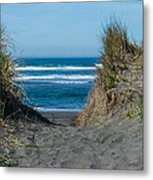 Pacific Trail Head Metal Print