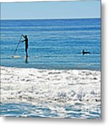 Paddle Boarder And Dolphin Metal Print