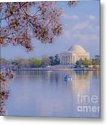 Paddling Past The Blossoms On The Basin Metal Print