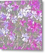 Paint A Dream  Metal Print by Tim Rice